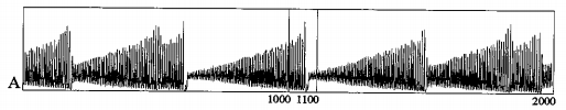 Example of Chaotic Laser Data (Set A), Taken from The Future of Time Series
