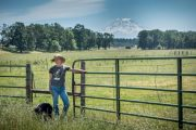 Crowd Cow, offering ranch to table meats, picks up $8 million fro...