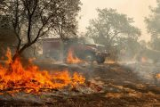 How to Track the Wildfires Raging Across the Western U.S. Online...