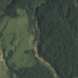 Sample Satellite Image of Amazon Rain Forest For Prediction