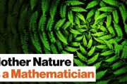 Universal Mathematics: All Life on Earth Is Bound by One Spooky A...