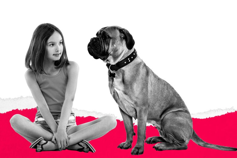 Help! I Want to Take My Ex to Court for Adopting a Dog With the S...