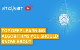Top Deep Learning Algorithms You Should Know About | Deep Learnin...