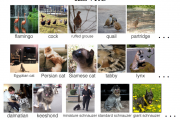 How to Automatically Generate Textual Descriptions for Photograph...