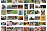 How to Use The Pre-Trained VGG Model to Classify Objects in Photo...