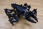 This robo-bug can improvise its walk like a real insect...