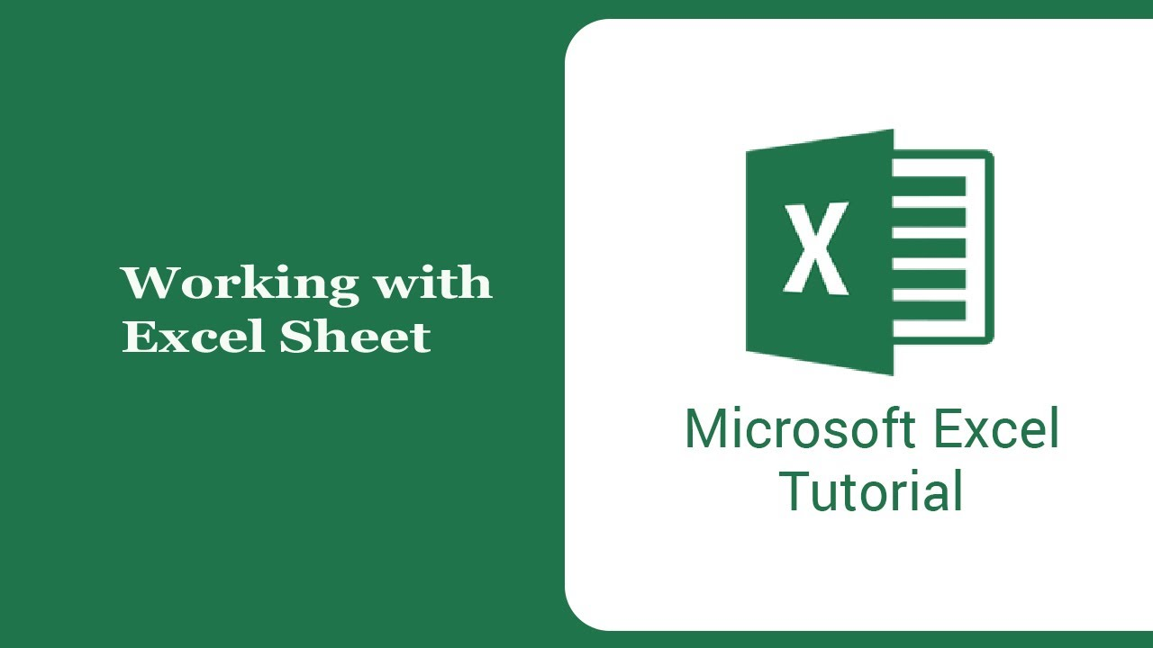 Working with  Excel Sheet/Microsoft Excel 2013/Computer Training ...